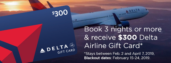 $300 Delta Airline Gift Card